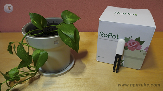 Review maceta inteligente Ropot Smart Flower Pot